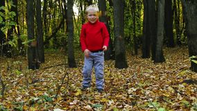 Το μικρό παιδί στο κόκκινο ρίχνει τα ξηρά φύλλα το φθινόπωρο φιλμ μικρού μήκους