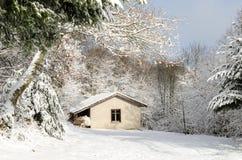 Το μικρό σπίτι στο χιονώδες δάσος Στοκ φωτογραφία με δικαίωμα ελεύθερης χρήσης