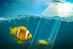 Το μικρό ψάρι είναι παγιδευμένο στο πλαστικό μπουκάλι στοκ φωτογραφία με δικαίωμα ελεύθερης χρήσης