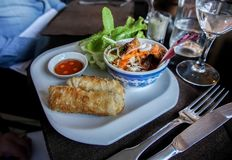 το μικτό πιάτο του τηγανισμένου ρόλου άνοιξη, εξυπηρετεί με τη σαλάτα Στοκ εικόνες με δικαίωμα ελεύθερης χρήσης