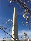 Το μνημείο της Ουάσιγκτον Στοκ φωτογραφία με δικαίωμα ελεύθερης χρήσης