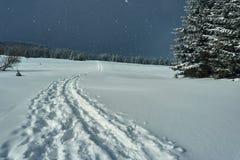 Το μονοπάτι για βάδισμα που θάβεται κάτω από το χιόνι Στοκ εικόνες με δικαίωμα ελεύθερης χρήσης