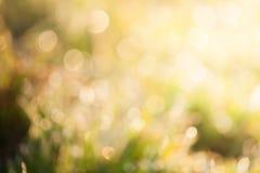 Το μουτζουρωμένο χρώμα φυσικό Στοκ εικόνες με δικαίωμα ελεύθερης χρήσης