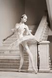 το μπαλέτο ballerina θέτει τις νε&omi Στοκ εικόνα με δικαίωμα ελεύθερης χρήσης