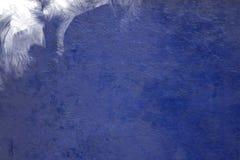 το μπλε ανασκόπησης σχο&lamb Στοκ Φωτογραφία