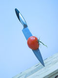 το μπλε συναντά την κόκκινη ντομάτα χάλυβα στοκ φωτογραφία