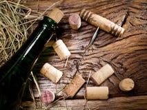 το μπουκάλι βουλώνει τ&omicron Στοκ Εικόνες