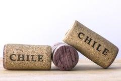 Το μπουκάλι κρασιού βουλώνει της Χιλής 01 Στοκ Φωτογραφία