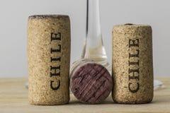 Το μπουκάλι κρασιού βουλώνει της Χιλής 04 Στοκ εικόνα με δικαίωμα ελεύθερης χρήσης