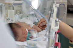 το μωρό αισθάνεται την αγάπ&et Στοκ Φωτογραφία
