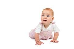 Το μωρό είναι σε όλα τα fours Στοκ Εικόνες