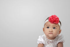 Το μωρό εξετάζει το copyspace στο γκρι Στοκ Εικόνες