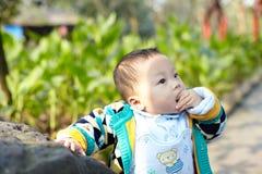το μωρό τιτιβίζει έξω πέτρα Στοκ φωτογραφίες με δικαίωμα ελεύθερης χρήσης