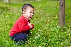Το νέο αγόρι μαθαίνει τη φύση Στοκ εικόνες με δικαίωμα ελεύθερης χρήσης
