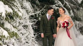 Το νέο γαμήλιο ζεύγος που περπατά, χαμόγελου και ομιλίας εκμετάλλευση παραδίδει το χιονώδες δάσος κατά τη διάρκεια των χιονοπτώσε φιλμ μικρού μήκους