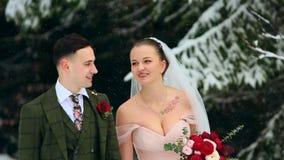 Το νέο γαμήλιο ζεύγος που περπατά, χαμόγελου και ομιλίας εκμετάλλευση παραδίδει το χιονώδες δάσος κατά τη διάρκεια των χιονοπτώσε απόθεμα βίντεο