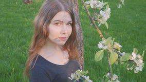 Το νέο ευτυχές περπάτημα γυναικών σε έναν οπωρώνα μήλων ανθίζει την άνοιξη το λευκό Πορτρέτο ενός όμορφου κοριτσιού απόθεμα βίντεο