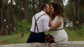 Το νέο ζεύγος πολυτέλειας αγγίζει ήπια το ένα το άλλο Κάθισμα στα ξύλα σε ένα κούτσουρο απόθεμα βίντεο