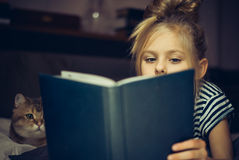 Το νέο κορίτσι διαβάζει το βιβλίο σε μια γάτα Στοκ Φωτογραφίες