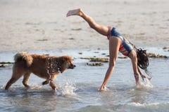 Το νέο κορίτσι κάνει ένα handstand και το σκυλί της κοιτάζει επάνω Στοκ φωτογραφίες με δικαίωμα ελεύθερης χρήσης