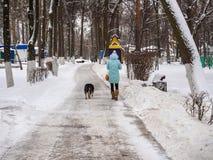 Το νέο κορίτσι πηγαίνει με ένα σκυλί στο χειμερινό πάρκο Στοκ φωτογραφίες με δικαίωμα ελεύθερης χρήσης