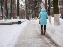 Το νέο κορίτσι πηγαίνει σε ένα χειμερινό πάρκο Στοκ φωτογραφία με δικαίωμα ελεύθερης χρήσης