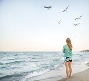 Το νέο κορίτσι ταΐζει Seagulls Στοκ Εικόνα