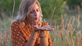 Το νέο ξανθό φύσηγμα γυναικών σε ετοιμότητα με χρυσό ακτινοβολεί στον τομέα στο ηλιοβασίλεμα κίνηση αργή απόθεμα βίντεο