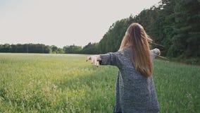 Το νέο προκλητικό και ελκυστικό κορίτσι περπατά τον τομέα στις όμορφες πορφυρές ακτίνες ηλιοβασιλέματος Καλοκαίρι Η νεολαία Ελευθ απόθεμα βίντεο