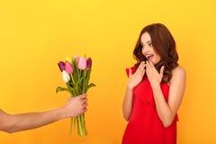 Το νέο στούντιο γυναικών απομόνωσε σε κίτρινο σε ένα κόκκινο φόρεμα που παίρνει την ανθοδέσμη τουλιπών στοκ φωτογραφία με δικαίωμα ελεύθερης χρήσης