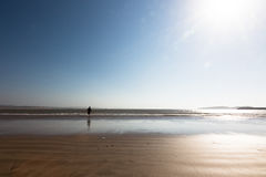 Το νέο τρέξιμο αγοριών στην ωκεάνια παραλία θέλει να πιάσει μια σφαίρα από το wate Στοκ Εικόνα