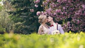 Το νέο όμορφο αγκάλιασμα ζευγών newlyweds, εξετάζει το ένα το άλλο, στάση κάτω από το sakura άνθησης E r απόθεμα βίντεο