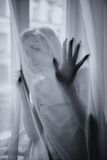 Το νέο όμορφο κορίτσι θέτει πίσω από μια κουρτίνα στοκ εικόνες με δικαίωμα ελεύθερης χρήσης