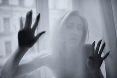 Το νέο όμορφο κορίτσι θέτει πίσω από μια κουρτίνα στοκ εικόνα με δικαίωμα ελεύθερης χρήσης