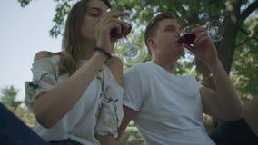 Το νέο gouple πίνει το κρασί υπαίθριο απόθεμα βίντεο