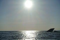 Το ναυάγιο στο ακρωτήριο μπορεί Στοκ φωτογραφίες με δικαίωμα ελεύθερης χρήσης
