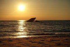 Το ναυάγιο στο ακρωτήριο μπορεί Στοκ Εικόνα
