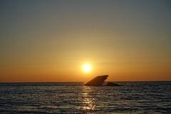 Το ναυάγιο στο ακρωτήριο μπορεί Στοκ φωτογραφία με δικαίωμα ελεύθερης χρήσης