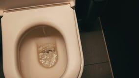Το νερό στραγγίζεται στην τουαλέτα Κεραμικό κύπελλο τουαλετών σε έναν δημόσιο χώρο ανάπαυσης απόθεμα βίντεο