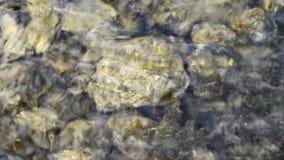 Το νερό τρέχει ήπια φιλμ μικρού μήκους