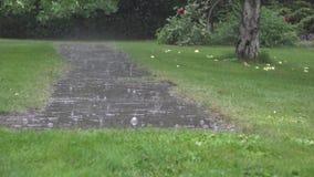 Το νερό δυνατής βροχής ρίχνει να αφορήσει το πεζοδρόμιο πετρών κήπων και το ράντισμα στη βροχερή ημέρα 4K απόθεμα βίντεο