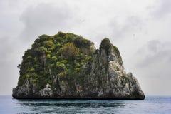Το νησί κουνελιών Στοκ Εικόνα