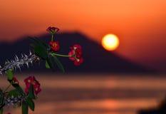 Το νησί της Μήλου Στοκ φωτογραφίες με δικαίωμα ελεύθερης χρήσης