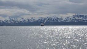 Το νορβηγικό σκάφος, παράκτιος σαφής, μπαίνοντας στο λιμάνι tromso το καλοκαίρι με το χιονώδες σκηνικό βουνών φιλμ μικρού μήκους