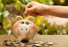 Το νόμισμα στο ανθρώπινο χέρι βάζει στη piggy τράπεζα εκείνο το surro Στοκ εικόνα με δικαίωμα ελεύθερης χρήσης
