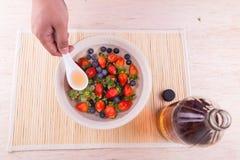 Το ξίδι μηλίτη της Apple εξουδετερώνει τα φυτοφάρμακα που βρίσκονται στα φρούτα και το VE Στοκ φωτογραφία με δικαίωμα ελεύθερης χρήσης