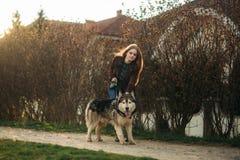 Το ξανθό γυναικείο πρότυπο θέτει στο φωτογράφο με το γεροδεμένο σκυλί Στοκ εικόνα με δικαίωμα ελεύθερης χρήσης