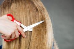 Το ξανθό κορίτσι κάνει τη νέα εικόνα τρίχας Στοκ εικόνες με δικαίωμα ελεύθερης χρήσης