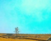 Το ξηρό αγρόκτημα Στοκ φωτογραφία με δικαίωμα ελεύθερης χρήσης