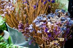 Το ξηρό λουλούδι φύλλων και κλάδων στο βάζο ή το δοχείο στον κήπο είναι στο σπίτι τ Στοκ Εικόνα